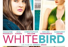 "CINEMA: ""White Bird"" (2014), une femme disparaît / ""White Bird in a Blizzard"" (2014), the lady vanishes 3 image"
