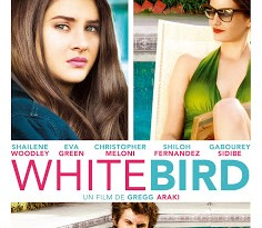 "CINEMA: ""White Bird"" (2014), une femme disparaît / ""White Bird in a Blizzard"" (2014), the lady vanishes 5 image"