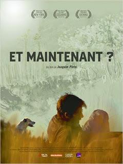"""""""Et maintenant ?"""" (2013), observer le temps 1 image"""