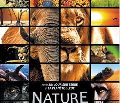 """[CRITIQUE] """"Nature"""" (2014) de Patrick Morris & Neil Nightingale 2 image"""