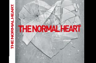 [DVD] <i>The Normal Heart</i> (2014), commencer la guerre / to start a war 3 image