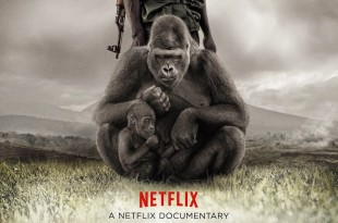 [Critique] <i>Virunga</i> (2014), ô Congo ! / oh Congo! 1 image
