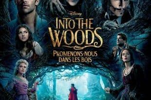 """Critique / """"Into the Woods, Promenons-nous dans les bois"""" (2014) : jovialité infectieuse dans les bois 2 image"""