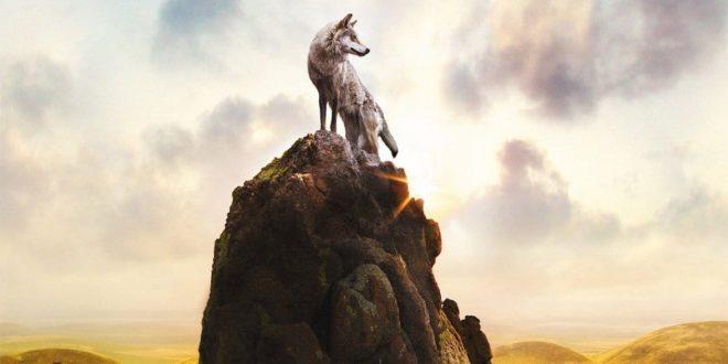 Le Dernier Loup de Jean-Jacques Annaud affiche film cinéma