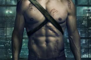 Soirées 100% super-héros :<br><i>Arrow</i> saison 2 & <i>Flash</i> saison 1 1 image