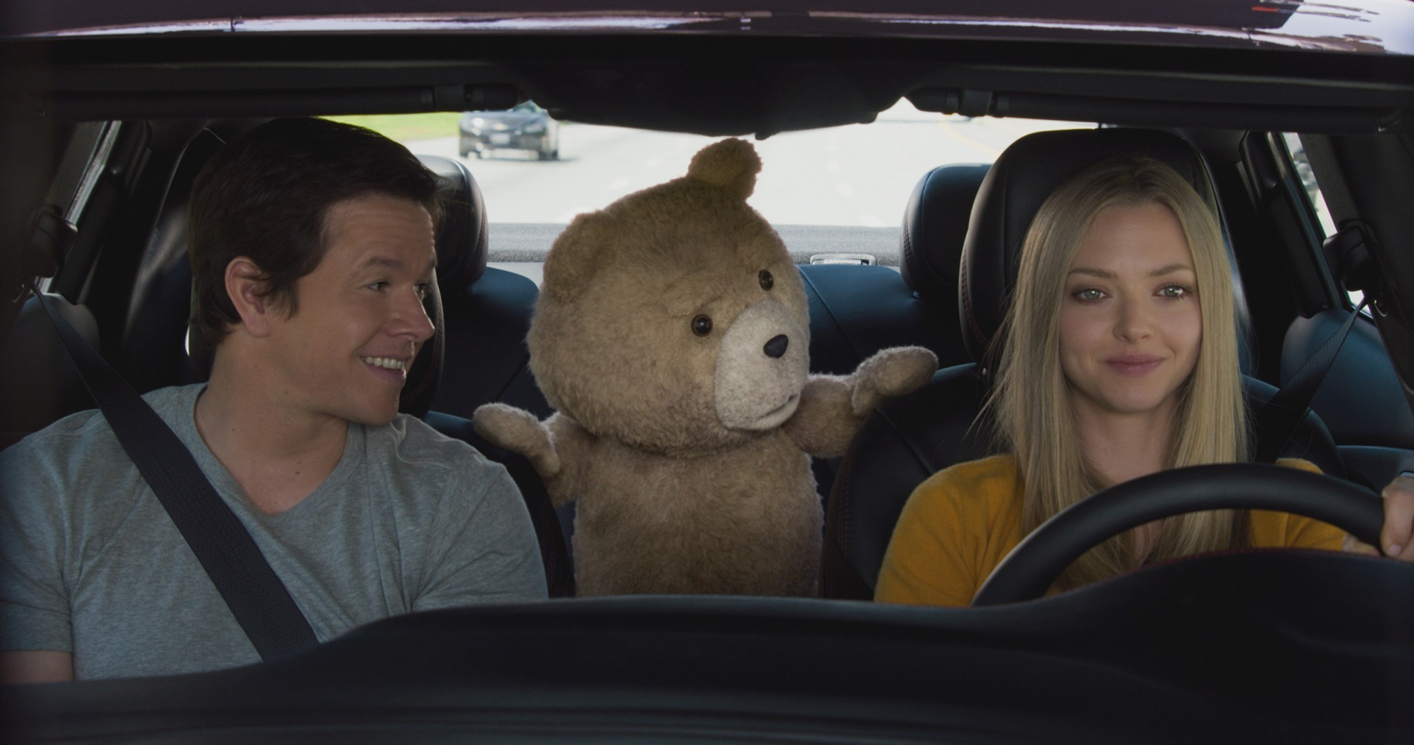 Ted2-image4