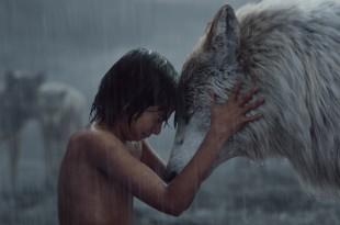 Le Livre de la Jungle image film cinéma