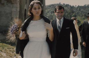 Mal de pierres image marion cotillard