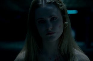 westworld capture image