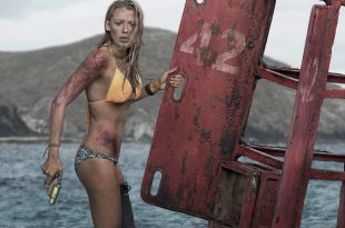 Instinct de survie - The Shallows image-1