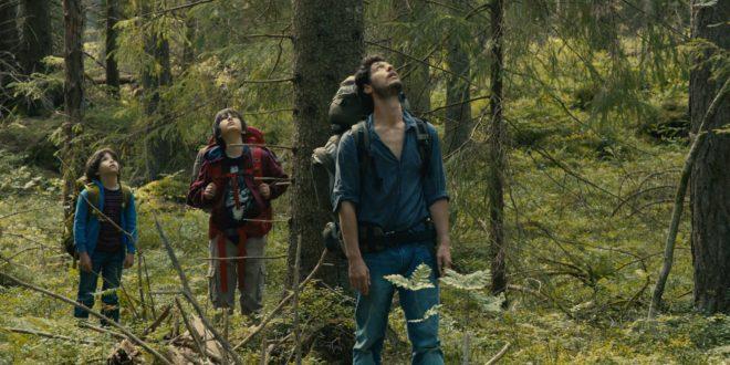 festival-de-cinema-europeen-des-arcs-2016-image-dans-la-foret-gilles-marchand