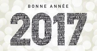 Sorties cinéma 2017