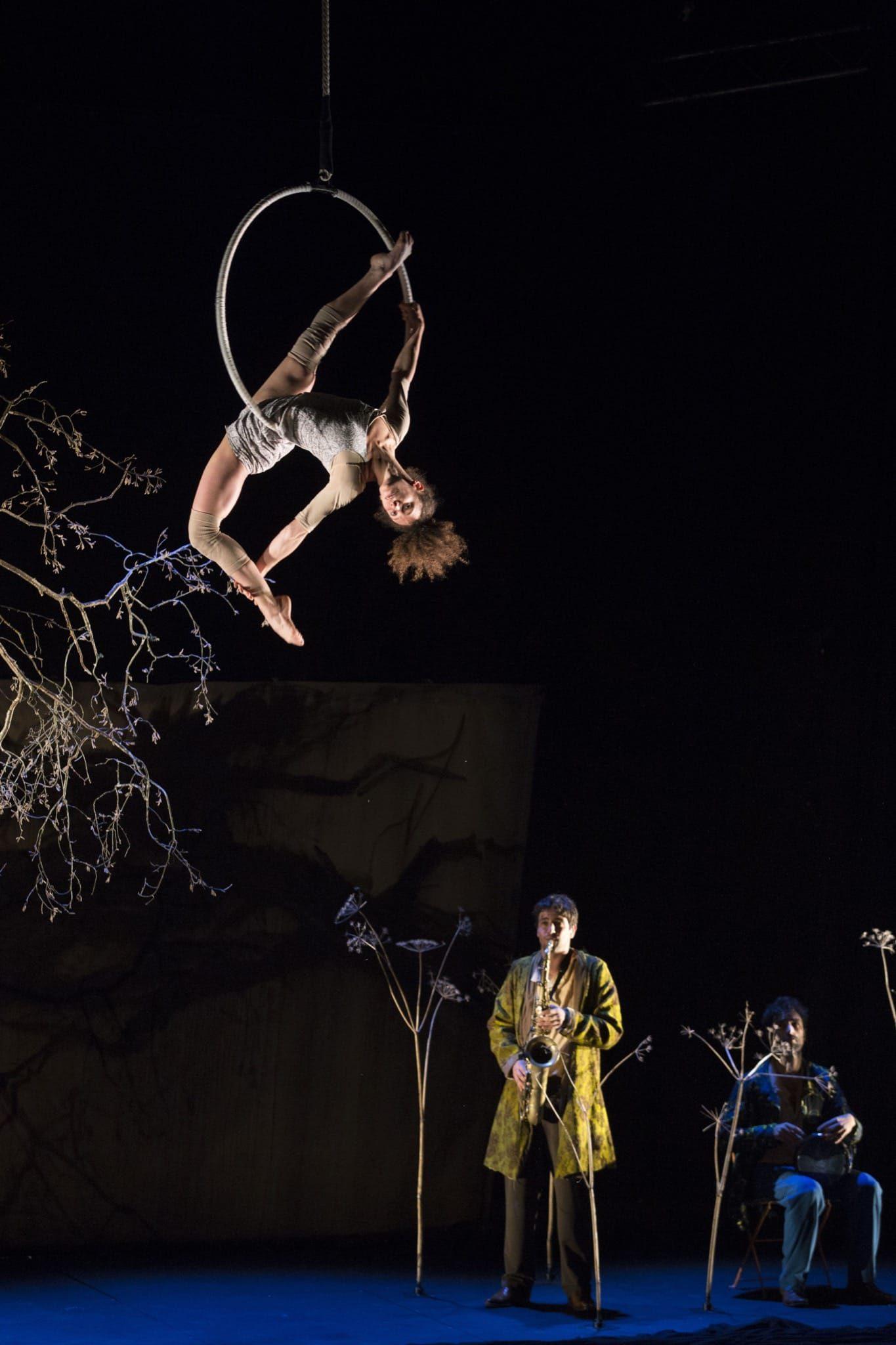 cirque plume image la dernière saison-1
