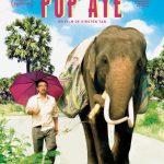 Affiche film Pop Aye