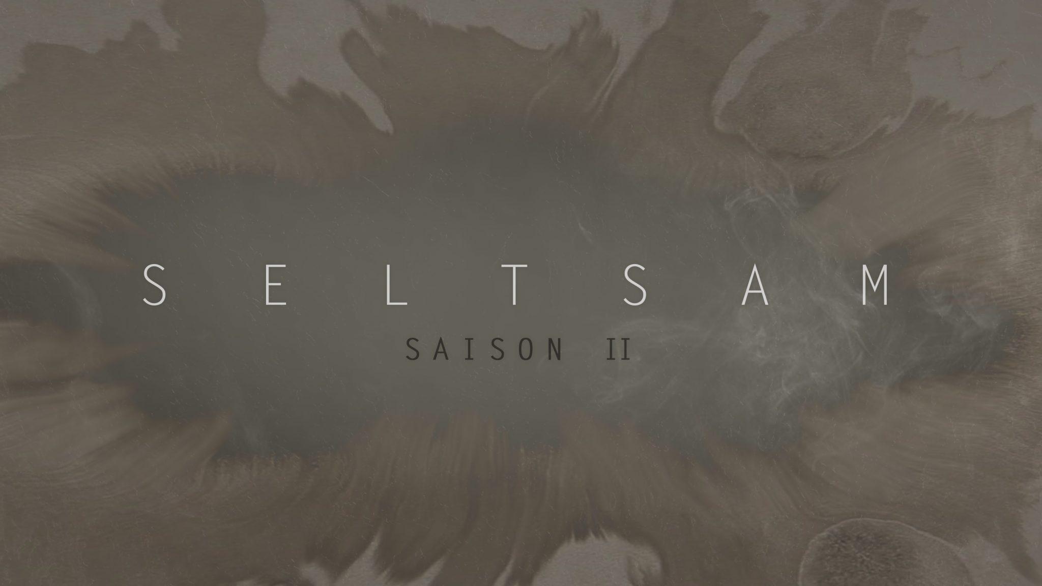 Seltsam saison 2 affiche