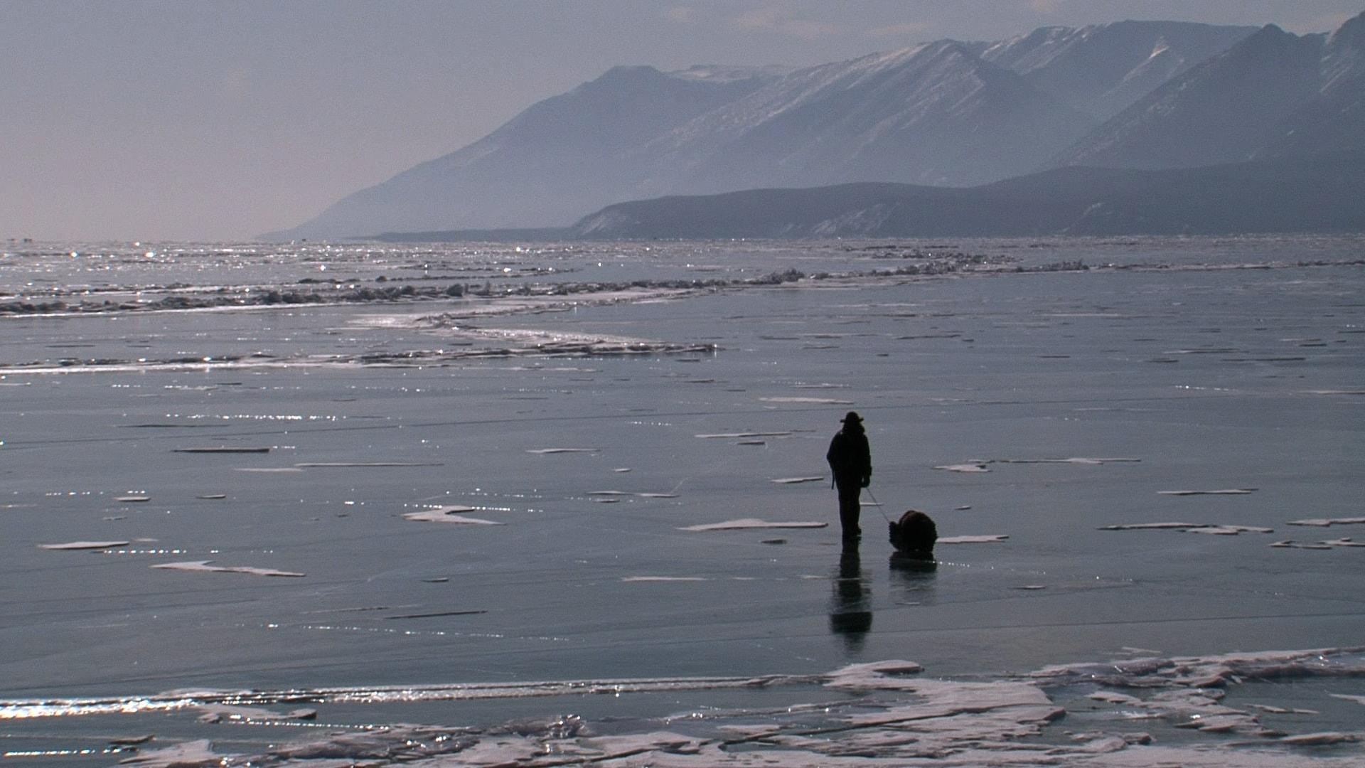6 mois de cabane au Baikal de Sylvain Tesson et Florence Tran image