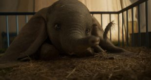 Dumbo de Tim Burton image film