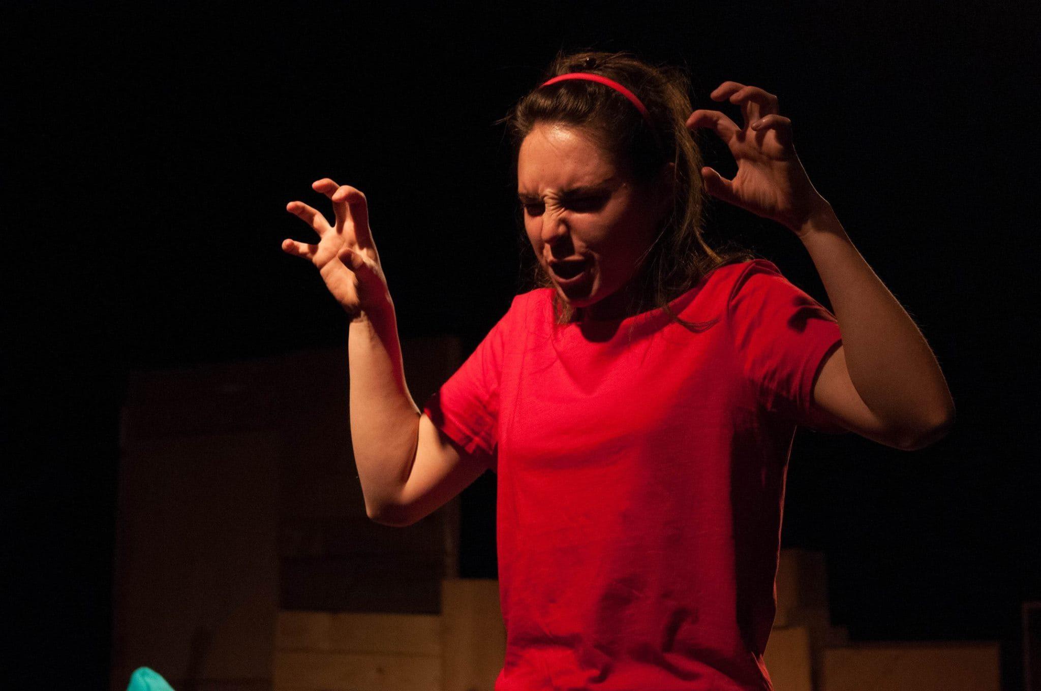 La Théorie du Y de Caroline Taillet image théâtre contemporain