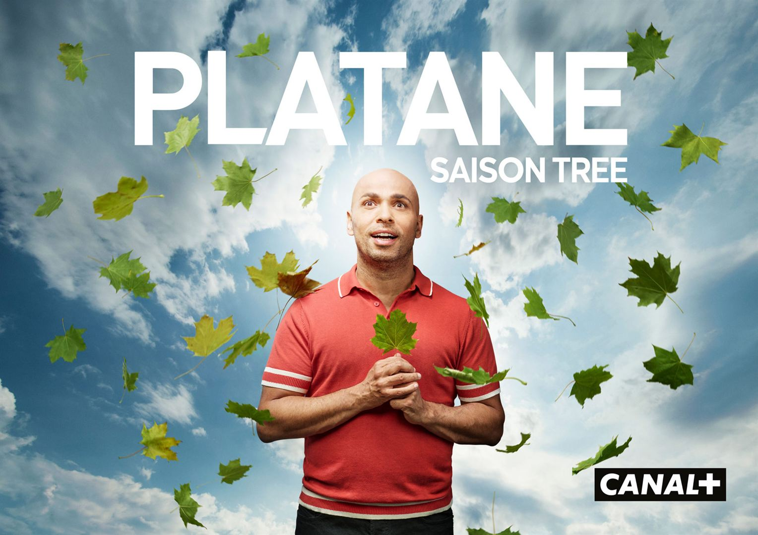 Platane saison 3 affiche série canal +