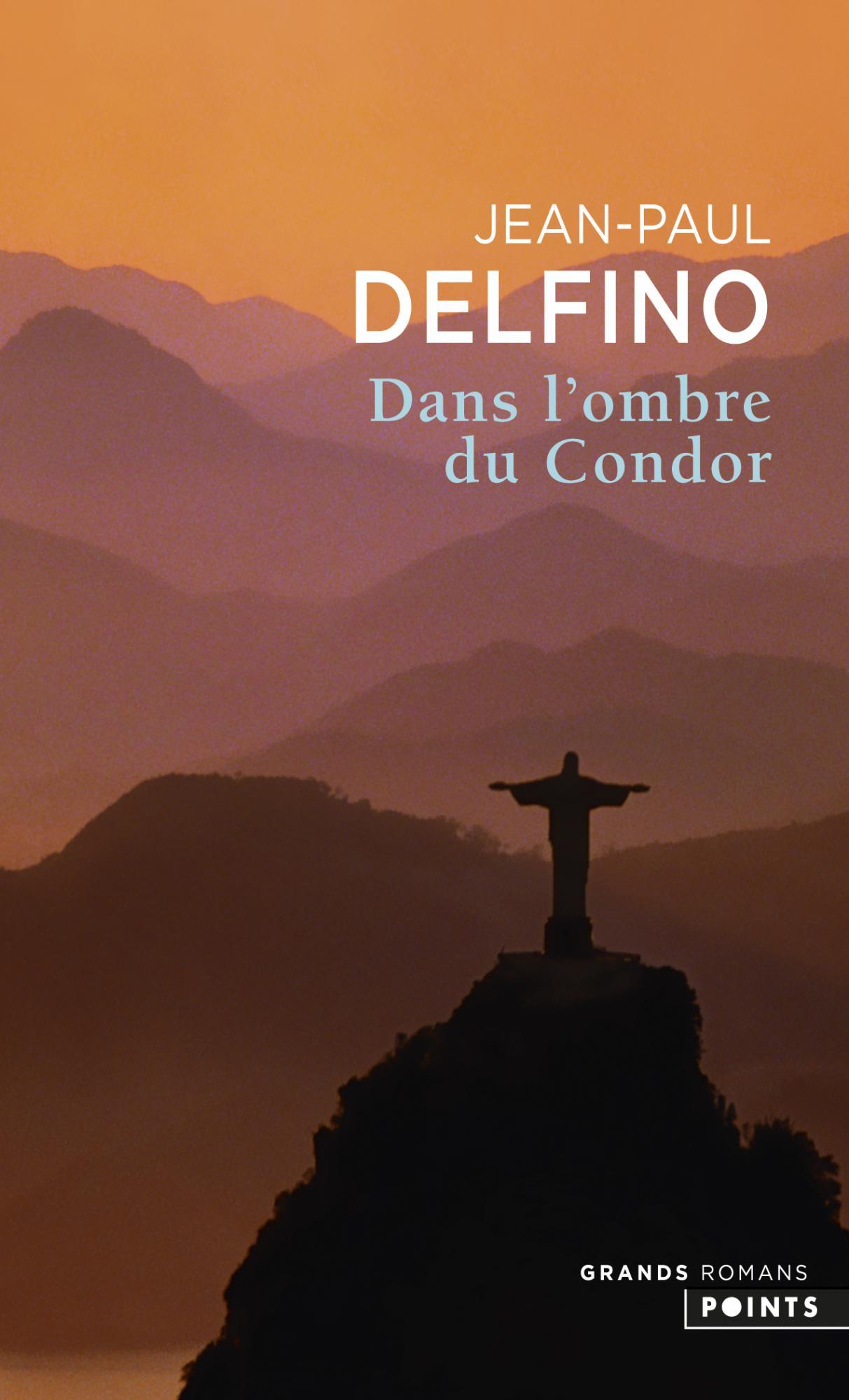 Dans l'ombre du Condor de Jean-Paul Delfino image couverture livre