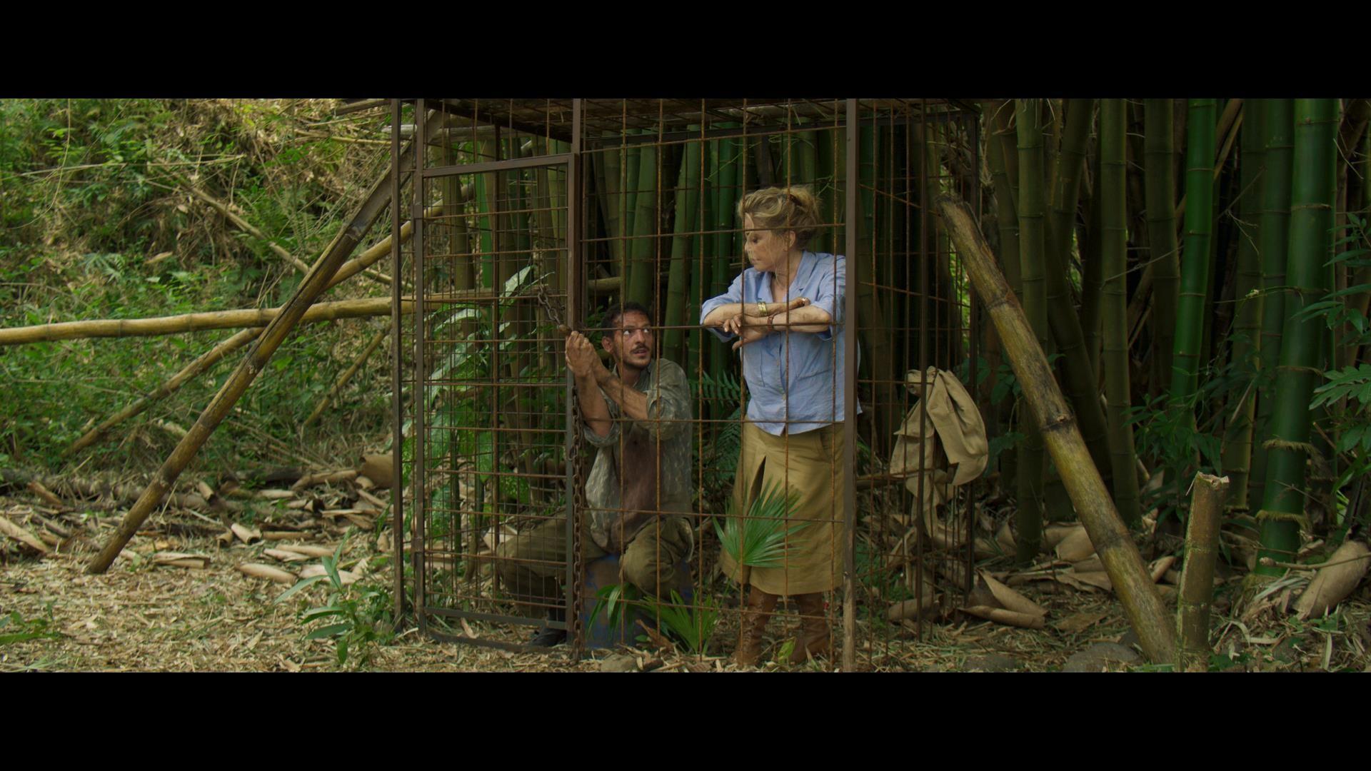 Terrible Jungle photo critique film