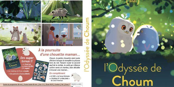 L'Odyssée de Choum visuel pochette DVD film animation