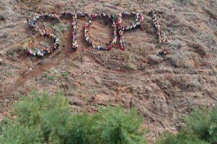 Pièces à conviction - Forêts en danger - Que fait l'État ? image magazine
