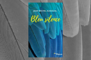 Bleu silence Jean-Michel Audoual critique avis